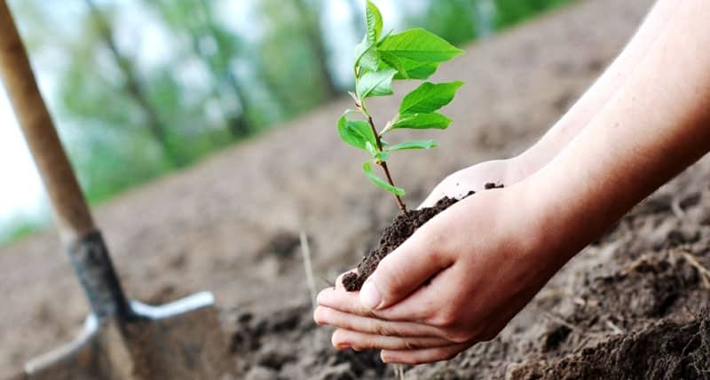 environmental protection business