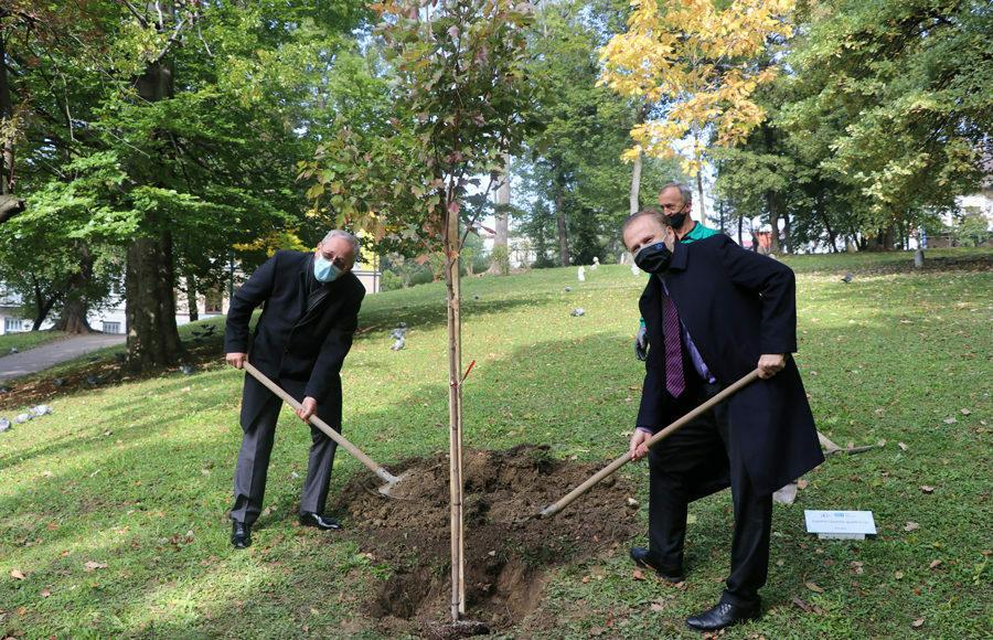 U povodu 20 godina BBI banka zasadit će preko hiljadu stabala širom BiH