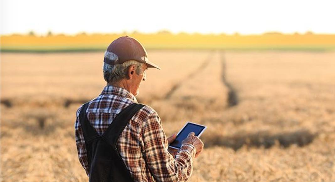 Kako započeti biznis na selu? 3 ideje za seoski biznis u 2021. (VIDEO)